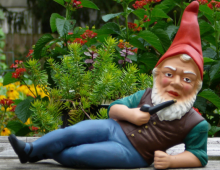 Saying 'No' to Garden Gnomes?