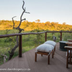The Royal Madikwe Lodge